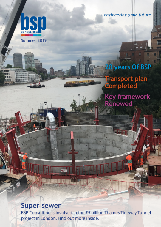 BSP Consulting Summer Newsletter 2019